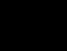 Schwazes Bild eines Tennisspielers